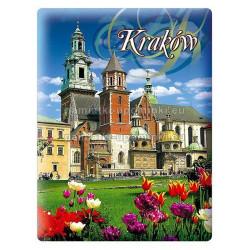 Magnes Katedra na Wawelu
