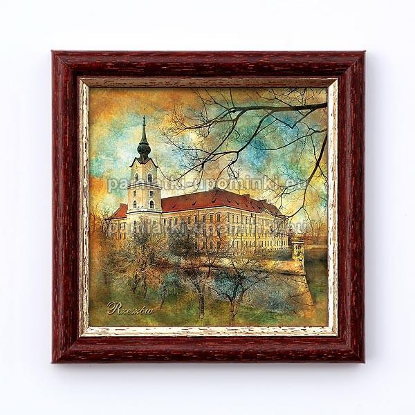 Obrazek Rzeszów Zamek